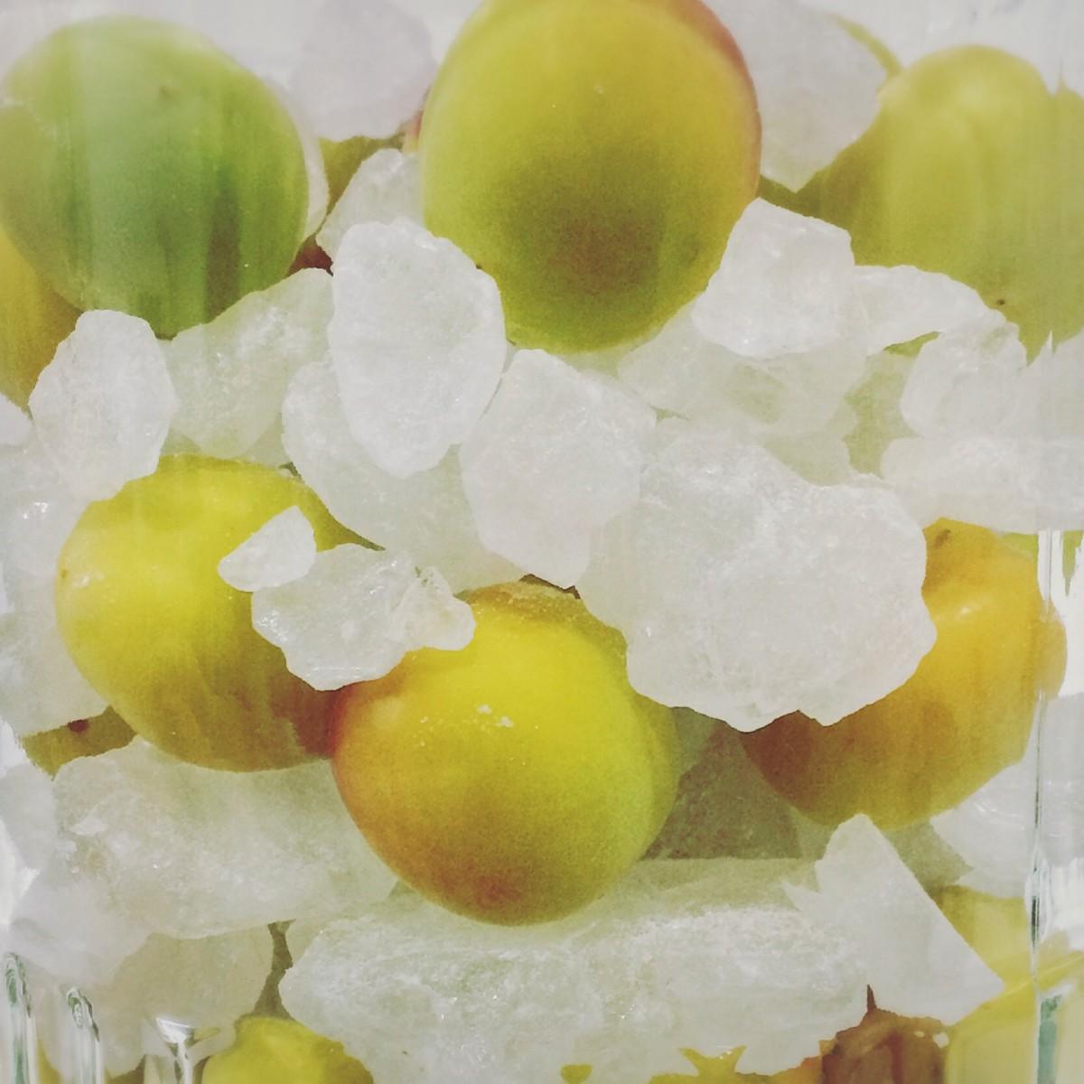 砂糖からこだわった、今年の梅しごと