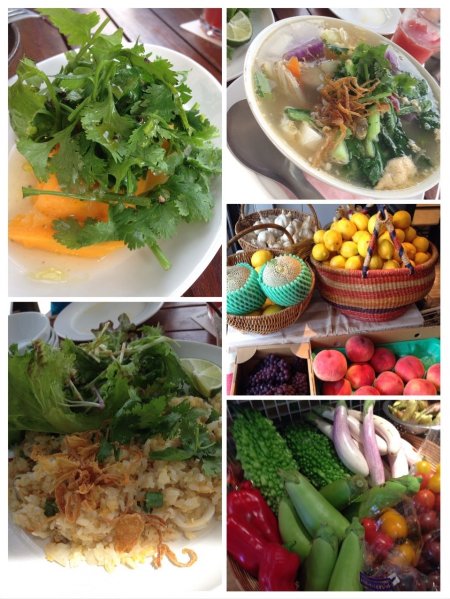 体幹力UPのSUPと新鮮野菜ランチ