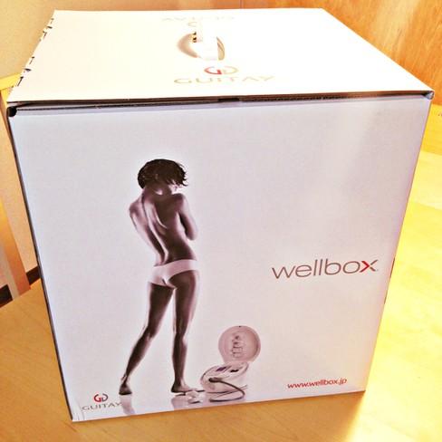 自宅でエンダモロジー!?wellbox