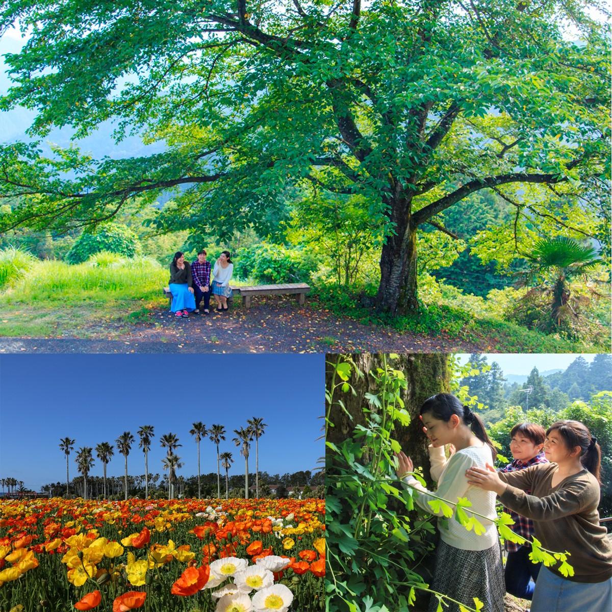豊かな自然を満喫。休暇村「ときめきの休日プラン」ペアチケット(1組2名様)をプレゼント!