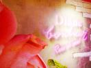 【期間限定】女子会にオススメ!希少なバラ ローズ・ド・メイが堪能できるダイアンボヌールカフェ!