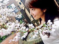 桜の季節🌸男受け?ラリン チェリーブロッサムスクラブ