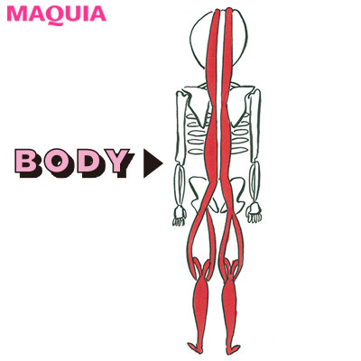 体の後ろの筋膜