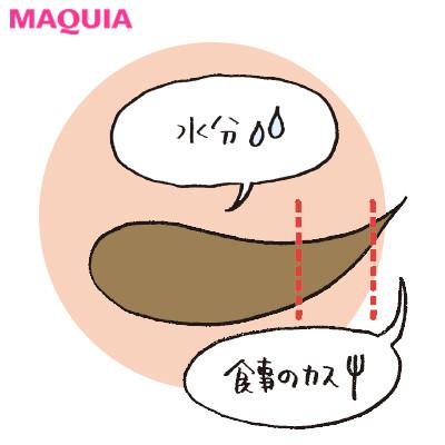 美と健康のカギを握る腸のギモンを解決!「腸にいい食事って?」「腸内環境は変えられる?」_1_3