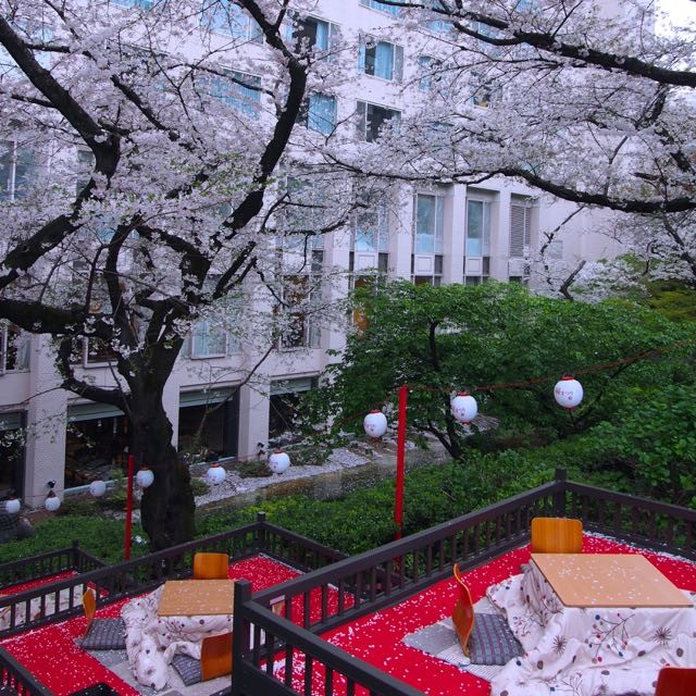 特等席◆こたつでお花見・ザ・プリンス さくらタワー東京「桂」桜 さじき席(〜4/10)桜まつりも開催中