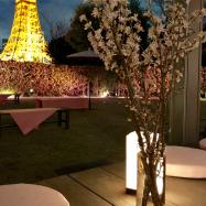 夜景も最高!期間限定桜色のCAFE「SAKURA CAFÉ」ザ・プリンス パークタワー東京 〜4/8まで