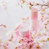 桜の香りのパックは幸せ〜春限定「さくらぱっく」3/1限定発売