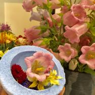 生花も売っている!アジア最大規模「LUSH 新宿店」現る。