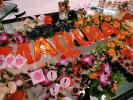 マキア創刊15周年【マキアビューティシェアクルーズ2019】夏の終わりの豪華イベント!