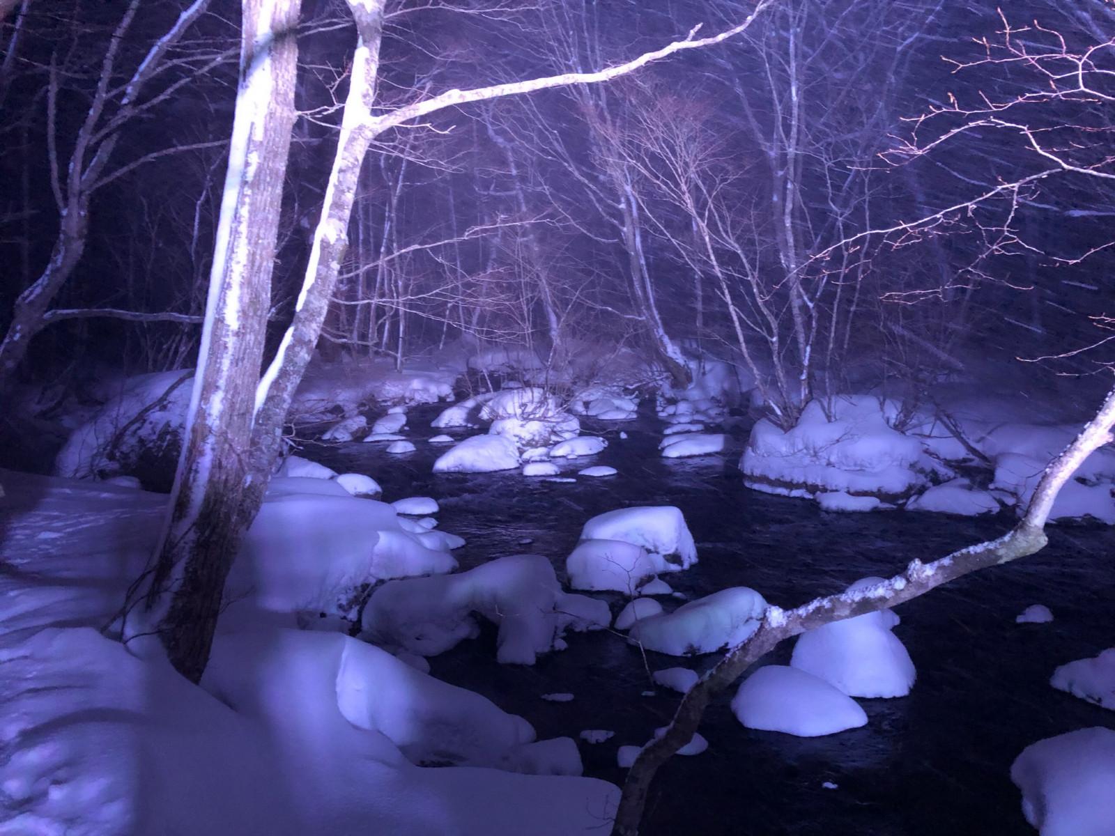 夜の牡丹雪