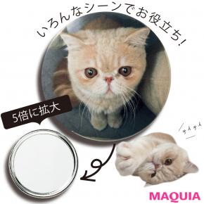 人気猫マッシュが手鏡に! 「MAQUIA」8月号の付録は、美容好き必携の拡大ミラー