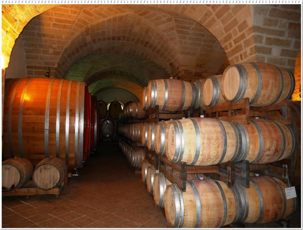 【金曜日はワインの日】Vol.3ワインの品種を学ぼう