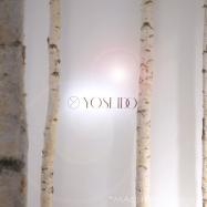 新スキンケアブランド【YOSEIDO】誕生!白樺樹液100%使用の保湿力がすごい