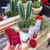もっちり美白+ハリケア【 アスタリフト 】で叶えるハリのある白玉肌 ASTALIFT × MAQUIA  アスタリフト Presents Beauty Party イベントレポート