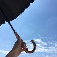 UV対策万全は万全?絶対に焼けない日傘サンバリア100!