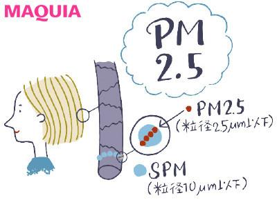 【肌の赤みやピリピリを予防したり、肌質を改善することはできる? 女性ホルモンの影響? ざわつく肌のQ&A】Q いまさらだけど、PM2.5って何?_1