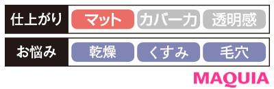 【パウダーファンデーション2020】トワニー モイストラッピング パクト_仕上がり・お悩み別