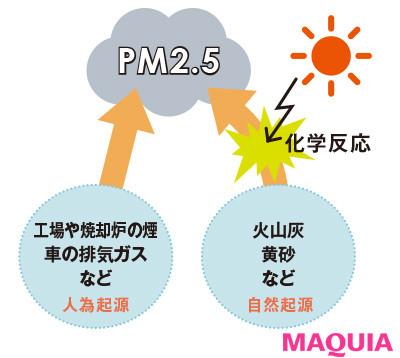 【肌の赤みやピリピリを予防したり、肌質を改善することはできる? 女性ホルモンの影響? ざわつく肌のQ&A】Q いまさらだけど、PM2.5って何?_2