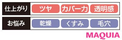 【パウダーファンデーション2020】アルビオン パウダレスト_仕上がり・お悩み別
