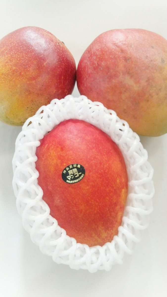 美肌食!!みんな大好き南国フルーツ○○は美肌になれる栄養が満点♪食べなきゃ損でしょ!?